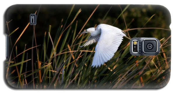 Galaxy S5 Case featuring the photograph Little Blue Heron Before The Change To Blue by Steven Sparks