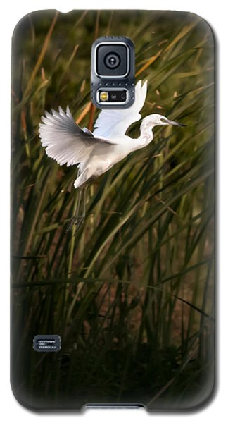 Galaxy S5 Case featuring the photograph Little Blue Heron On Approach by Steven Sparks