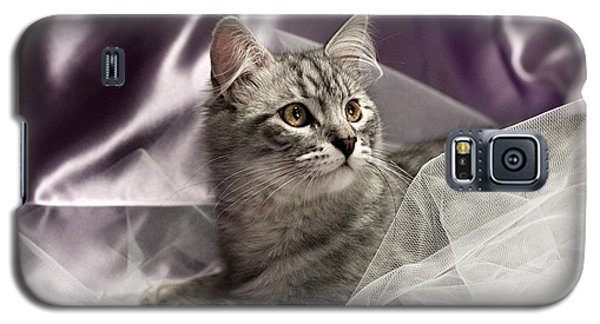 Little Cat On Lilac Galaxy S5 Case
