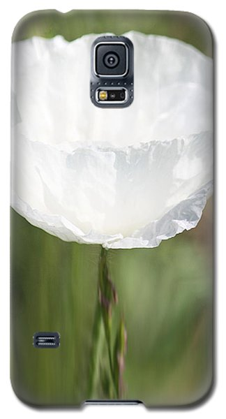 Galaxy S5 Case featuring the photograph Little Hope by The Art Of Marilyn Ridoutt-Greene