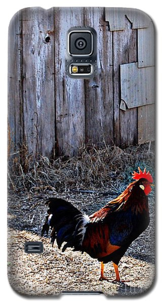 Little Red Rooster Galaxy S5 Case
