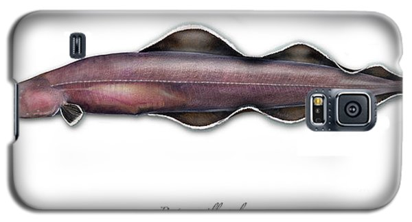 Galaxy S5 Case featuring the painting Living Fossil Eel - Protoanguilla Palau - Isle Of Palau by Urft Valley Art