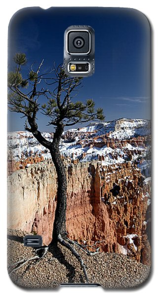 Galaxy S5 Case featuring the photograph Living On The Edge by Karen Lee Ensley