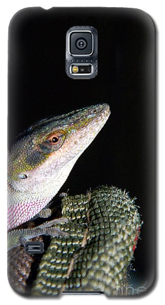 Galaxy S5 Case featuring the photograph Lizard by Ester  Rogers