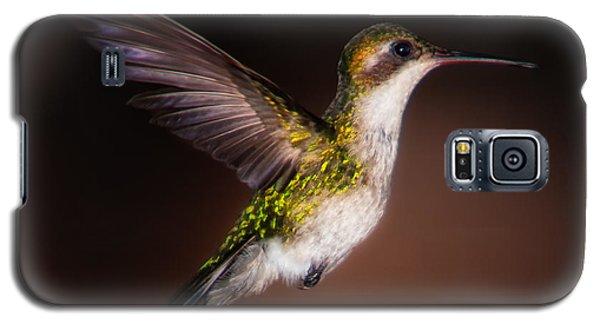 Lone Hummingbird Galaxy S5 Case