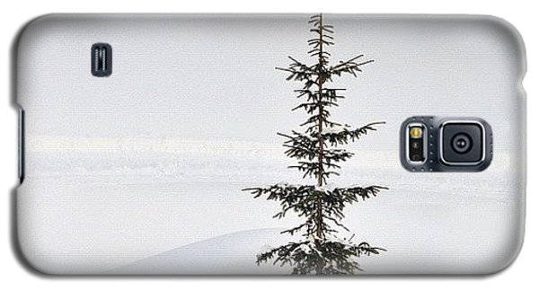 Funny Galaxy S5 Case - Lonely Tree by Matthias Hauser