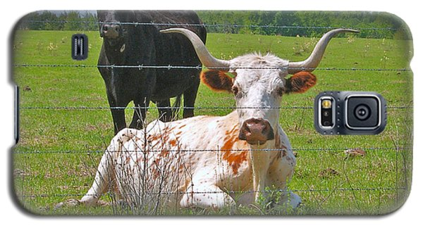 Longhorn Resting Galaxy S5 Case by Val Miller