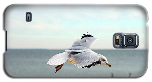 Galaxy S5 Case featuring the photograph Looking For Dinner by Clayton Bruster