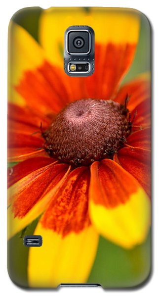 Looking Susan In The Eye Galaxy S5 Case