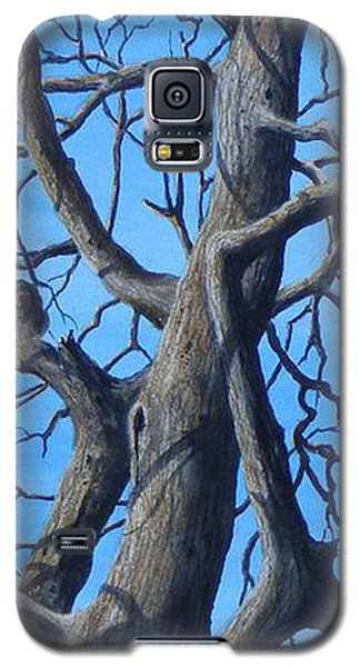 Looking Up   Sold Galaxy S5 Case