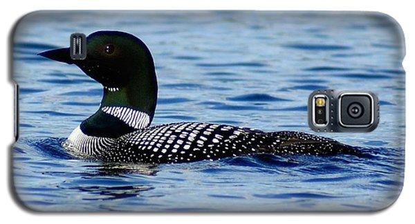 Loon 5 Galaxy S5 Case