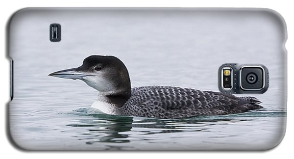 Loon Galaxy S5 Case