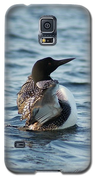 Galaxy S5 Case featuring the photograph Loon Dance 1 by Steven Clipperton