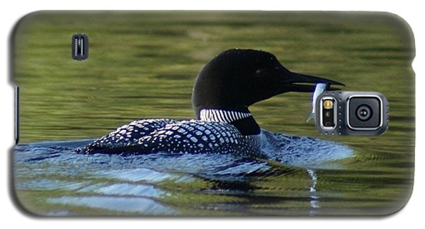 Loon With Minnow Galaxy S5 Case