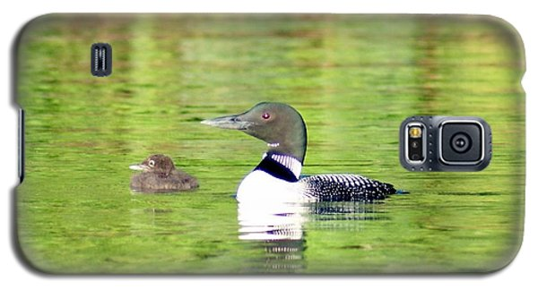 Galaxy S5 Case featuring the photograph Loons Big And Small by Steven Clipperton