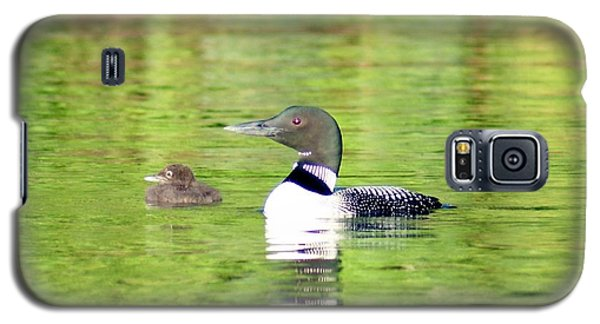 Loons Big And Small Galaxy S5 Case