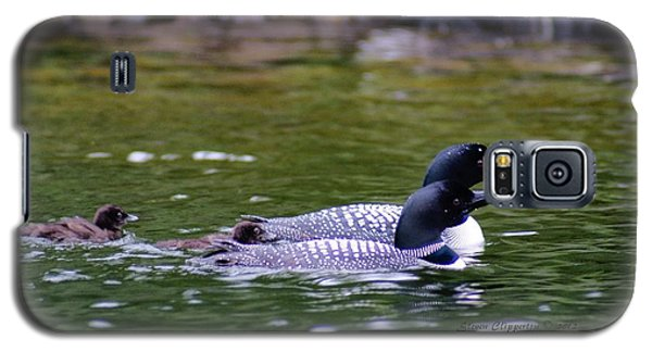 Loons With Twins 3 Galaxy S5 Case