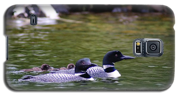 Galaxy S5 Case featuring the photograph Loons With Twins 4 by Steven Clipperton