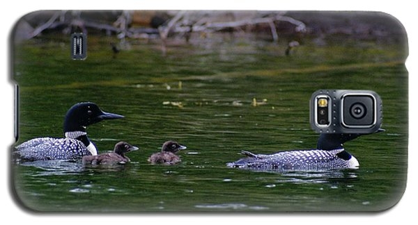 Galaxy S5 Case featuring the photograph Loons With Twins by Steven Clipperton