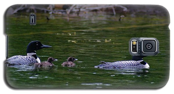Loons With Twins Galaxy S5 Case