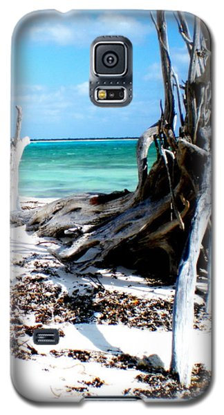 Galaxy S5 Case featuring the photograph Cozumel Mexico  Paradise On Earth by Danielle  Parent