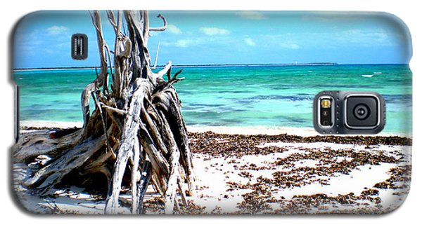 Galaxy S5 Case featuring the photograph Lost Paradise The Sequel 3 by Danielle  Parent
