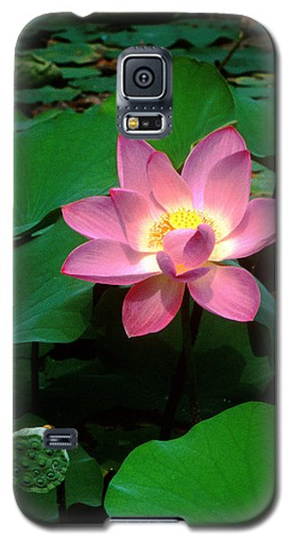 Lotus Flower And Capsule 24a Galaxy S5 Case