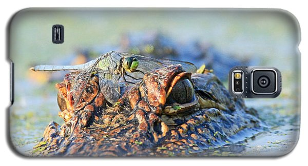 Galaxy S5 Case featuring the photograph Louisiana Alligator With Dragon Fly by Luana K Perez
