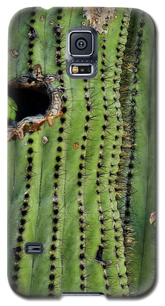 Lovebirds And The Saguaro  Galaxy S5 Case