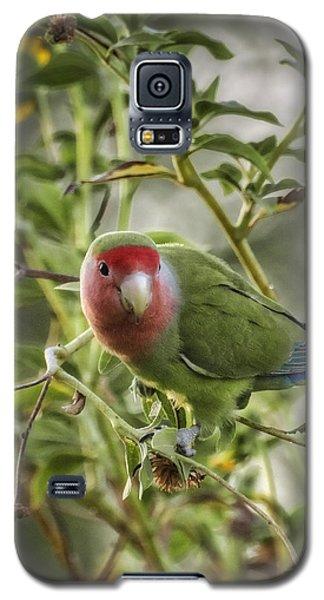 Lovely Little Lovebird Galaxy S5 Case