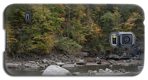 Loyalsock Creek Worlds End State Park Galaxy S5 Case