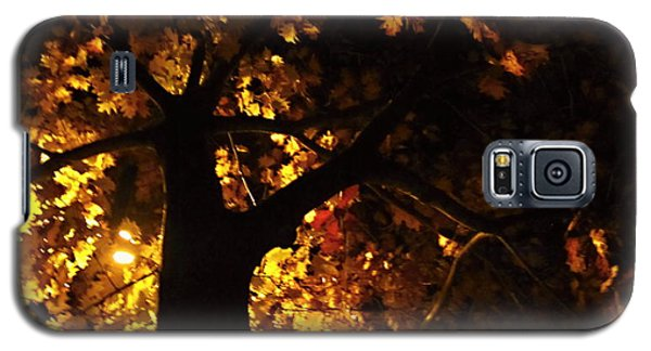 Luminous Deciduous Galaxy S5 Case