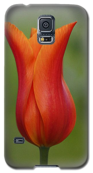 Galaxy S5 Case featuring the photograph Luscious Orange Tulip by Cathie Douglas