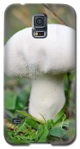 Lycoperdon Galaxy S5 Case