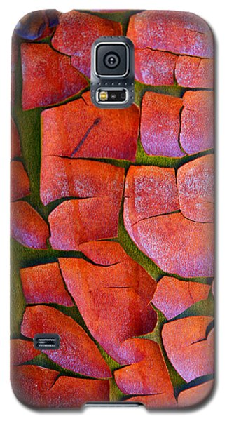 Madrone Galaxy S5 Case