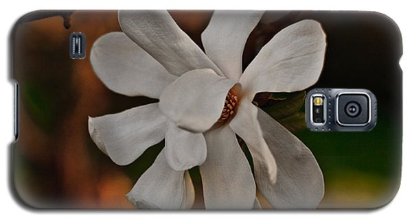 Galaxy S5 Case featuring the photograph Magnolia Bloom by Barbara McMahon