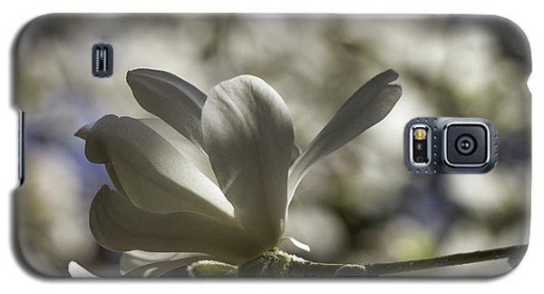 Magnolia X Loebneri  Merrill. Galaxy S5 Case