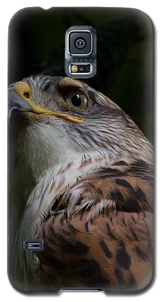 Galaxy S5 Case featuring the photograph Majestic by Anne Rodkin