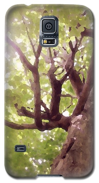 Galaxy S5 Case featuring the photograph Majestic Maple by Brooke T Ryan