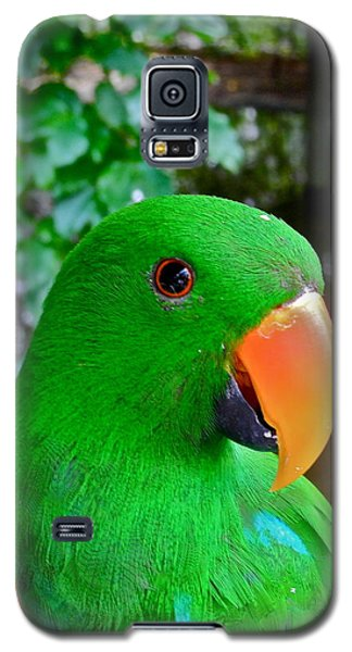 Male Eclectus Parrot II Galaxy S5 Case by Kirsten Giving