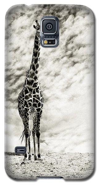 Male Giraffe Galaxy S5 Case
