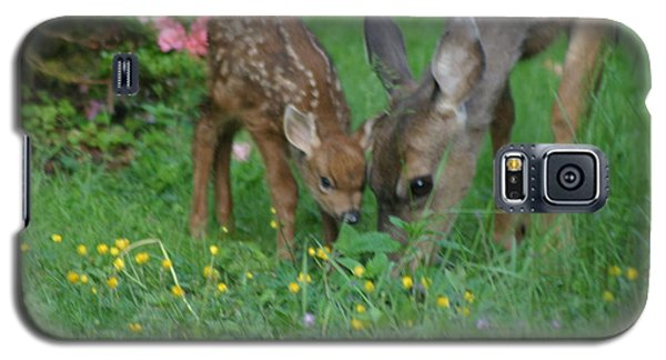 Galaxy S5 Case featuring the photograph Mama And Spotted Baby Fawn by Kym Backland