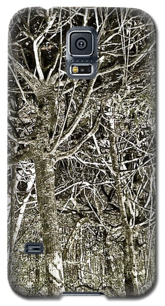 Mangrove Abstract Galaxy S5 Case by John Colley