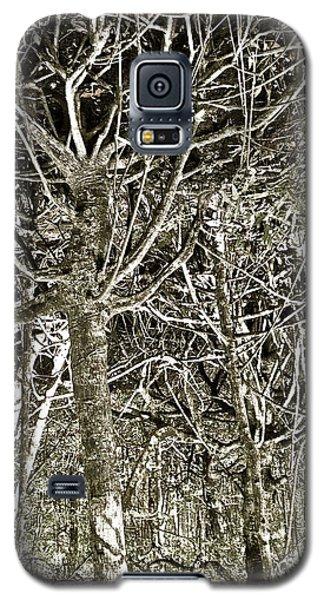 Mangrove Abstract Galaxy S5 Case