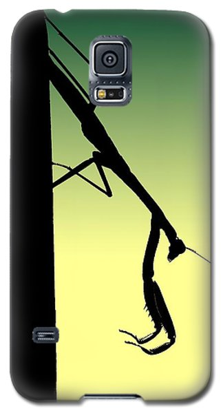 Mantis Galaxy S5 Case