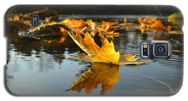 Maple Leaf Floating In River Galaxy S5 Case