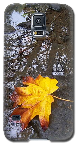 Galaxy S5 Case featuring the photograph Maple Leaf Reflection 1 by Peter Mooyman