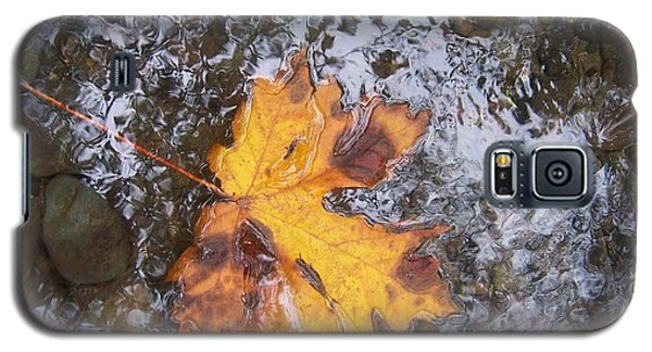 Galaxy S5 Case featuring the photograph Maple Leaf Reflection 2 by Peter Mooyman