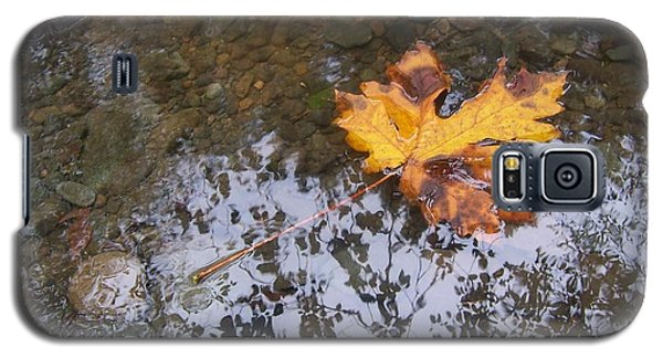 Galaxy S5 Case featuring the photograph Maple Leaf Reflection 3 by Peter Mooyman