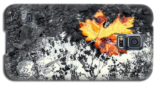 Maple Leaf Selective Color Galaxy S5 Case